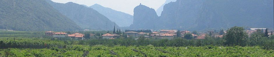 Trento ja viinitila